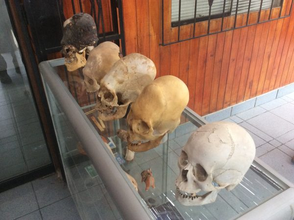 Elongated Skulls-MuseumHistorico